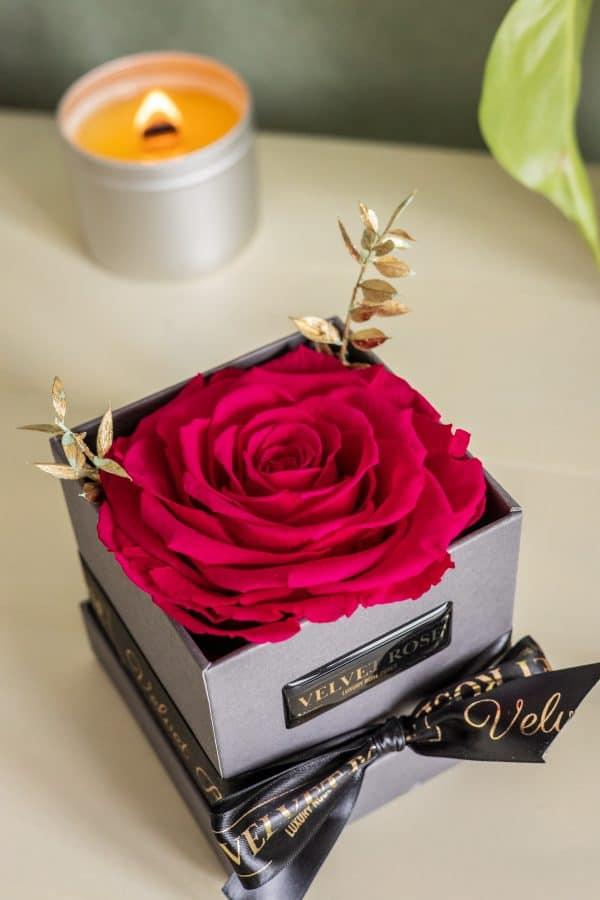 FUSCHIA – THE BONITA SOLO ROSE BOX – EXTRA LARGE ETERNITY REAL PRESERVED ROSES