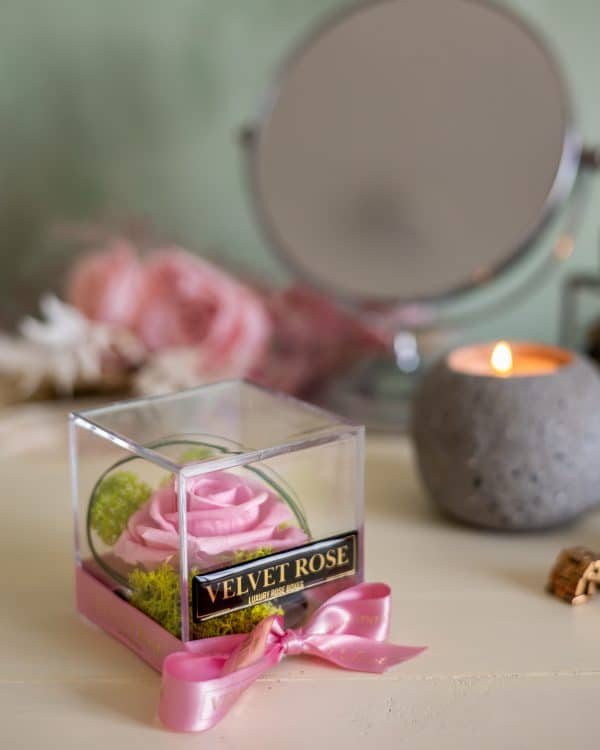 BABY PINK – ACRYLIC CUBE SOLO ROSE BOX – ETERNITY REAL PRESERVED ROSE