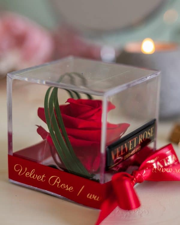 RUBY RED – ACRYLIC CUBE SOLO ROSE BOX – ETERNITY REAL PRESERVED ROSE