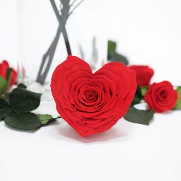 Red Heart Eternity Rose