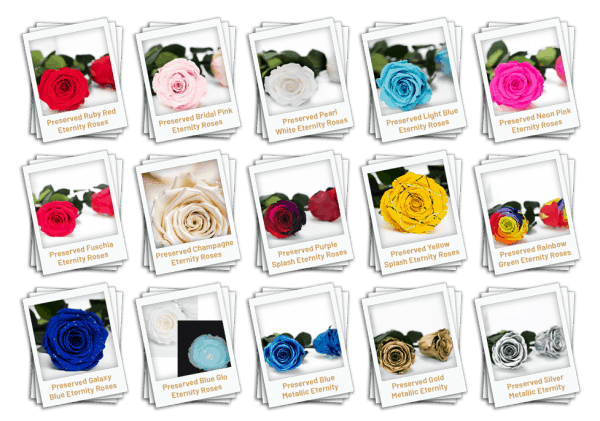 Preserved Roses Colours
